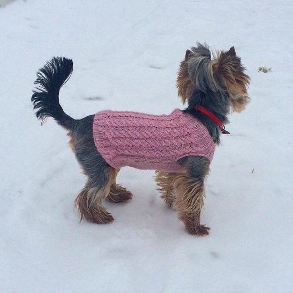 Кофточка на собаку розовая